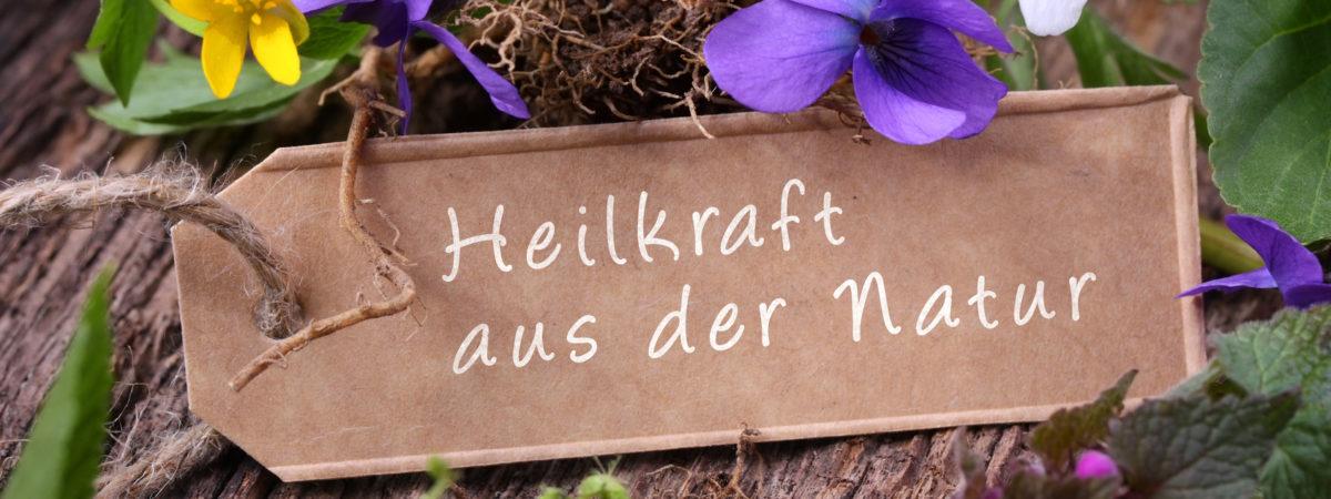 Blühende Heilkräuter - Heilkraft aus der Natur